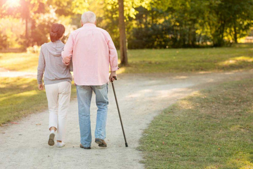 Senior walking stick