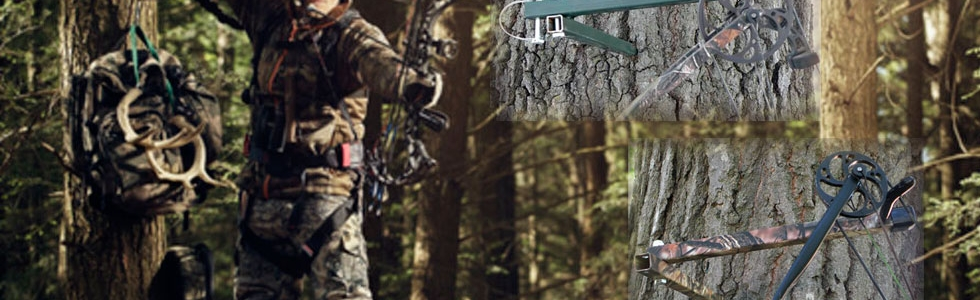 deer wall mount for sale