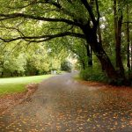 Best City Parks in the U.S